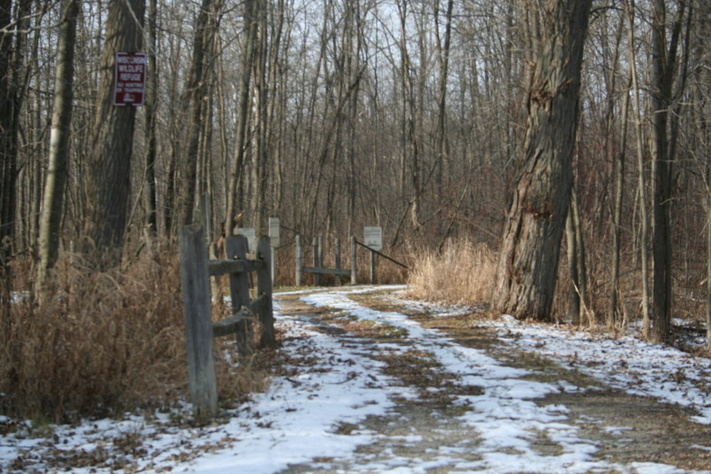 Take a walk down the meandering trout trail path