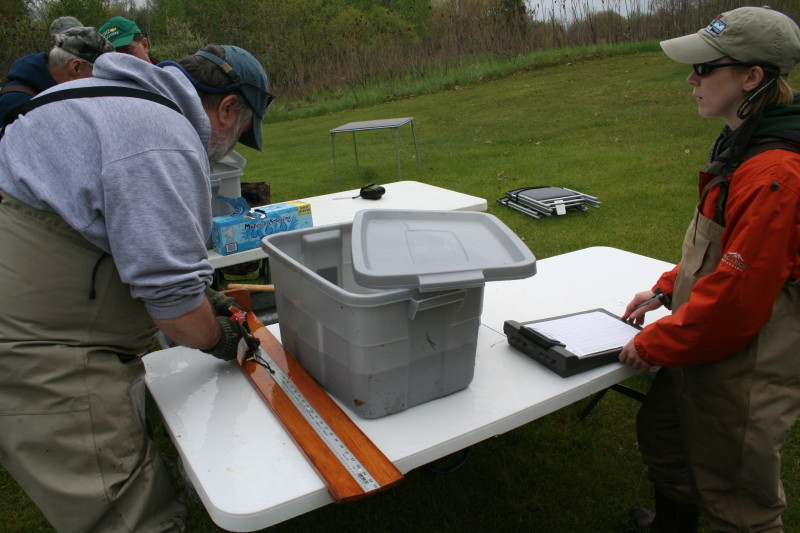 Workstation for measurements and recording of sample