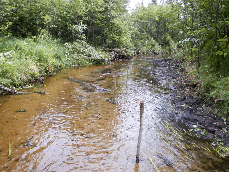 Stakes strategically placed in stream to hold bundles and ties