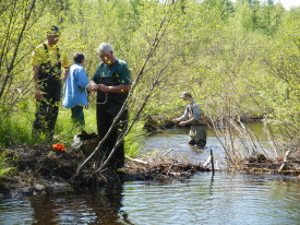 Beaver Dam slows flow increases temp