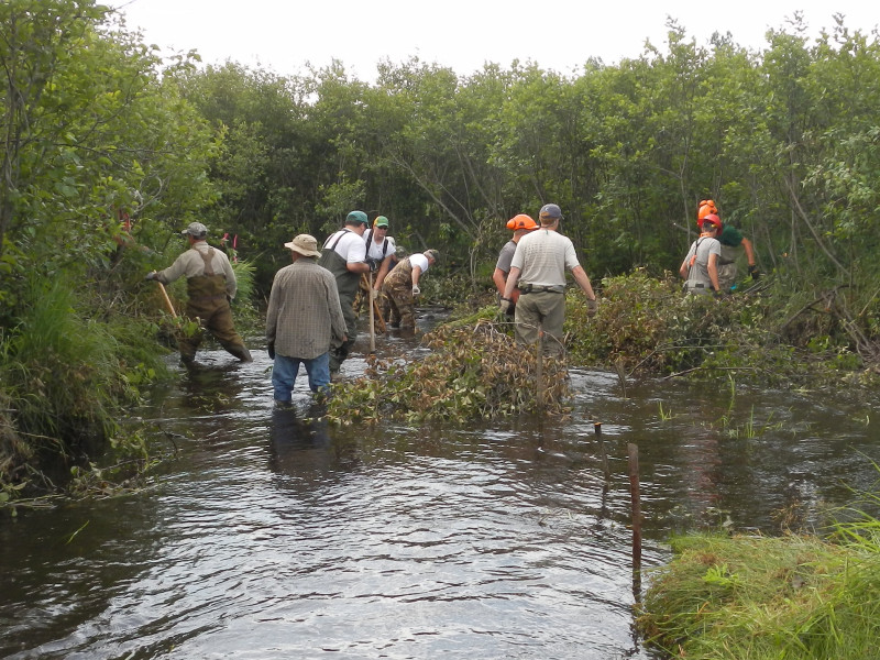 Work crew placing brush bundles within stakes