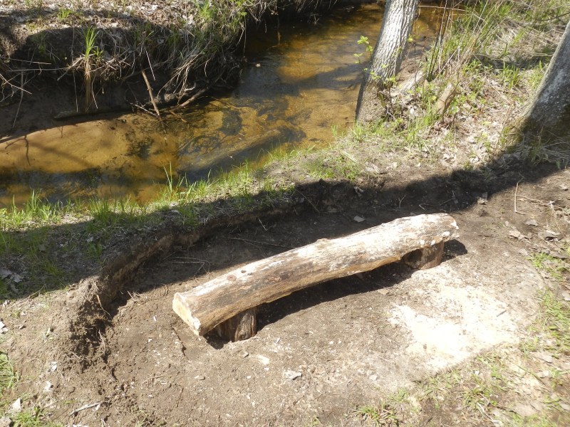 Notice the half-log in the water behind mock-up