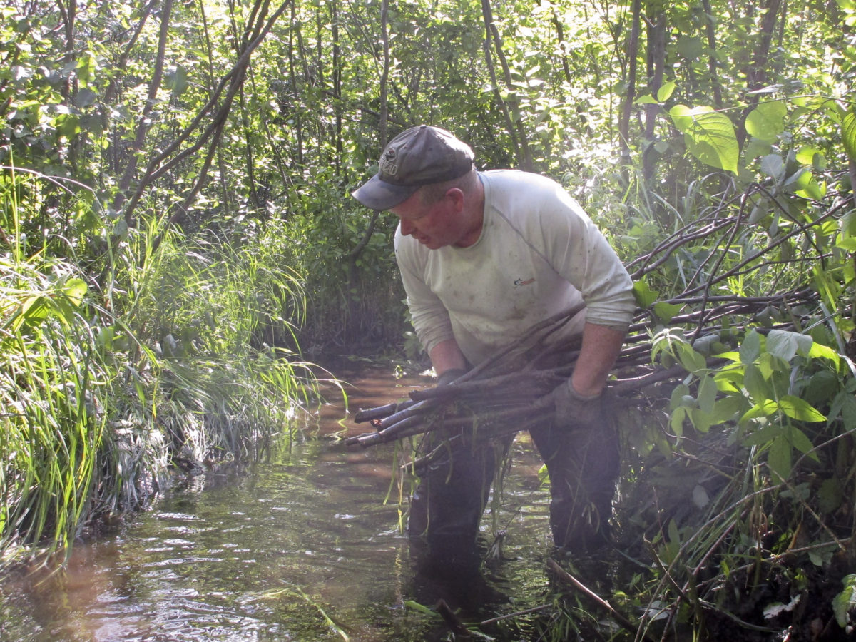Pete Tilleman placing tag Alder bundle