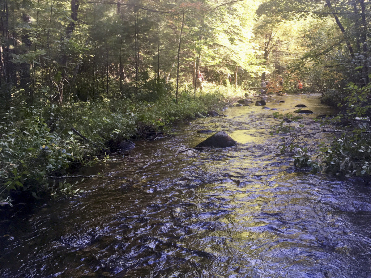 Eagle Creek is one of the beautiful creeks in Marinette County