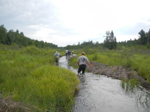 Meandering stream channel increase flow rate