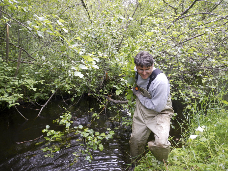 Jeff House dragging off tag Alder