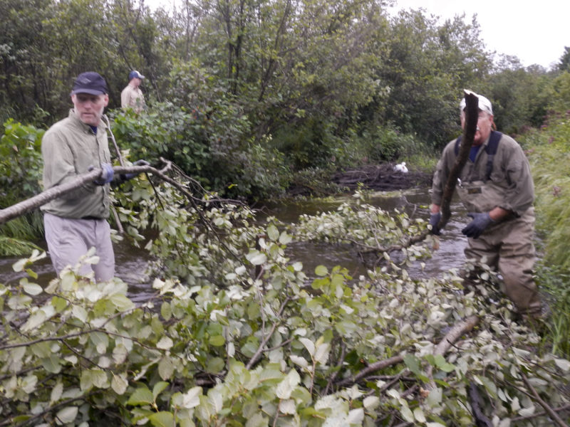 Dave Lengas and Bill Livingston placing cut tag Alder